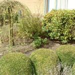 garden Pannenhuis