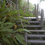 Steps leading to the rooms