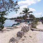 Marathon Key Beach Club Foto