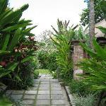 Foto de COMO Uma Ubud, Bali