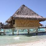 An overwater bungalow