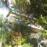 Outside of the deluxe room surrounded by lush vegetation