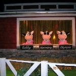 3 cows in the chocolate tour