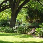 Lili'uokalani Botanical Garden Foto