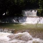YS Falls tour - waterfall