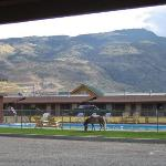 Pool with Pony
