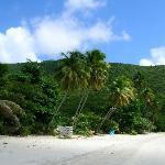View toward Mongoose Beach
