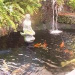 The koi pond at Luana Inn