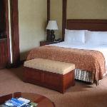 Premier Room Bed