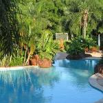another pool view - relaxing area with service is to the right