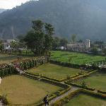 garden view from Tapovan balcony