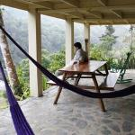 It is best to rise early and watch Belize come to life. The birds, the bugs, the orchids...