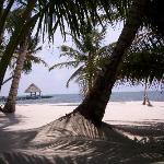 VH beach
