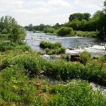 Scenery on river walkl