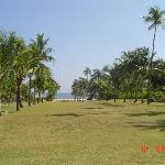 View towards beach from halfway point (beach to Main House)