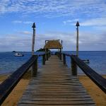 Main jetty