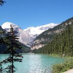 From a stroll along Lake Louise.