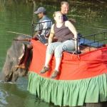 elephant ride at chaaya