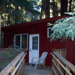 Our cabin at the Riverside Campgrounds, Big Sur.