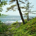 Sooke Regional Park Coast Trail