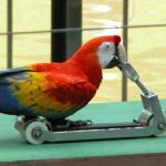 Πάρκο Πτηνών Κουάλα Λουμπούρ