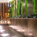 Impressive water feature in foyer