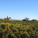 Riding on Selworthy Beacon