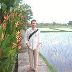 Walking along rice fields