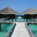 water  bungallow