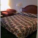 La Quinta Inn & Suites Seguin Photo