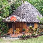 Matangi Private Island Resort Photo
