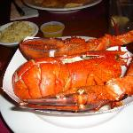 Foto de Ogunquit Lobster Pound Restaurant