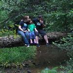 Crossing Cavender Creek