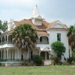 Historic sabal palm house