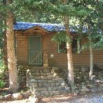 A cabin  the woods