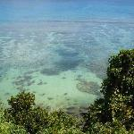View of our the coral below our bure