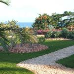 Exotic gardens & landscaping