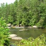 The Toccoa River, minutes away