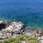 Foto de La Rosa sul Mare