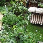 garden from the Sun room balcony (2)