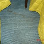 Carpet between the beds