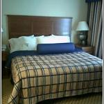 Homewood Suites by Hilton Laredo at Mall del Norte Photo