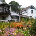 The Main House & Flowers