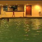 The pool (imaged from my camcorder)