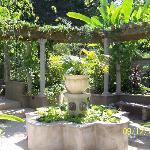 Fountain in center of garden