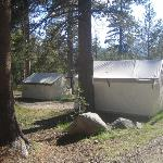 Overview of part of the tent cabin area