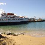 Vieques port