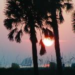 Zdjęcie South Beach Condo/Hotel