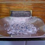 Gross soap dish