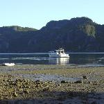 Isolated bay in Whangaroa Harbour